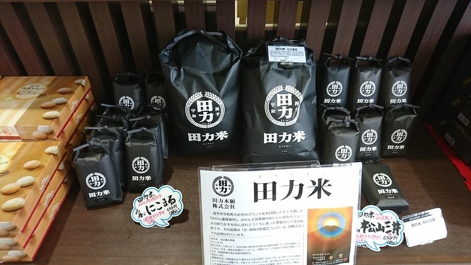 愛媛県西予市の特産品である田力米です。