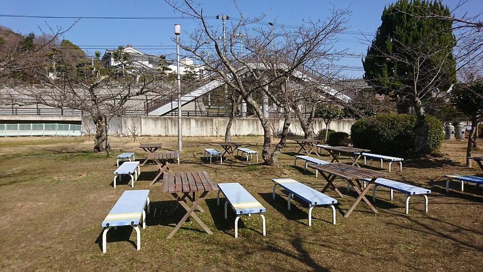 桜の木とテーブル、イス達。