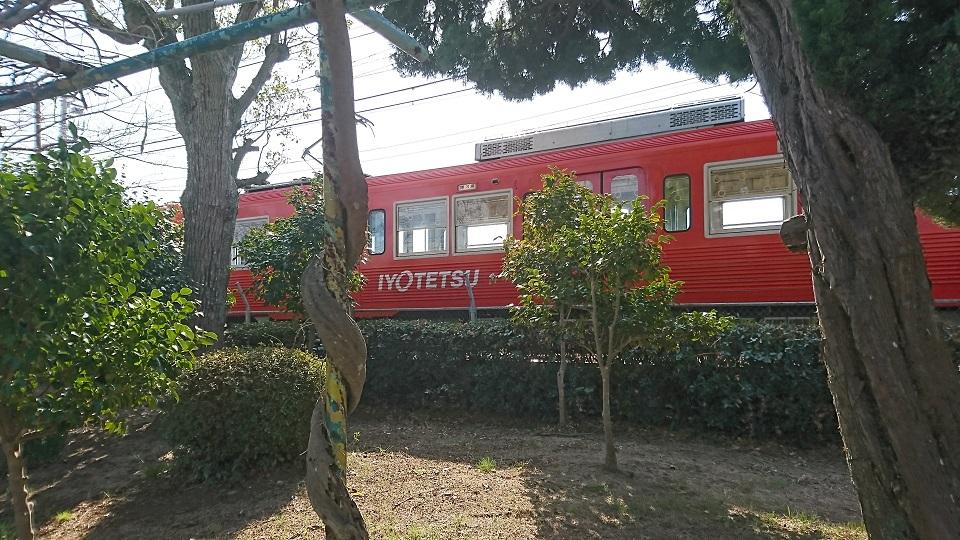 園内を横切る伊予鉄道の電車。