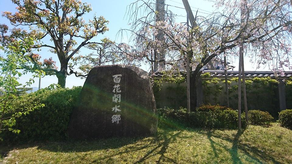 百花開水郷と刻まれた巨石。しだれ桜が横に立っている。