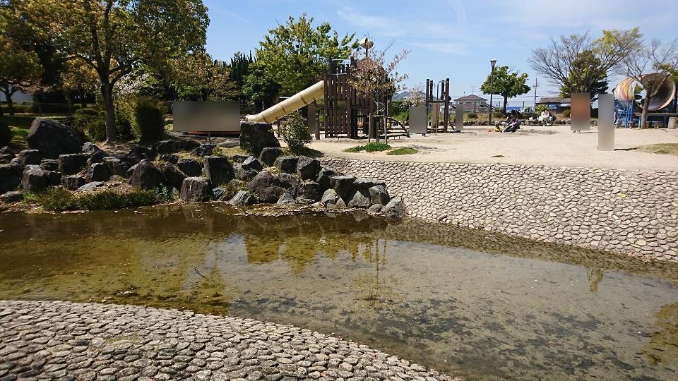芝生広場から子供広場の間を流れる水辺。夏には水遊びをする子どもでにぎわう。