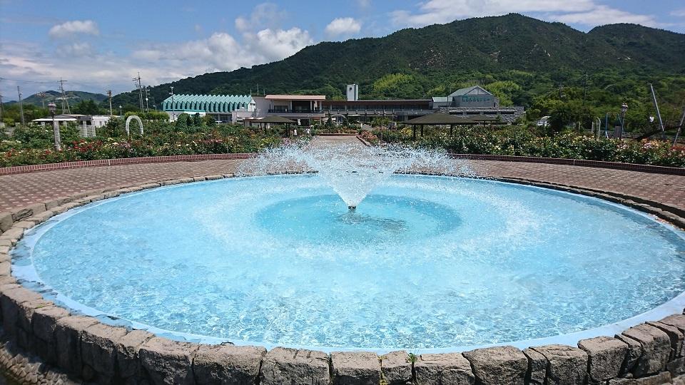 噴水広場の噴水。
